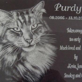 Shop-cat-memorials-1