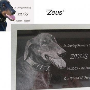 dog-memorial-plaques-4